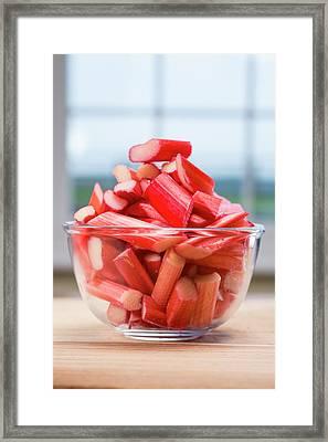 Rhubarb In Bowl Framed Print