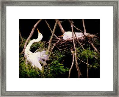 Rhythm Of Nature Framed Print