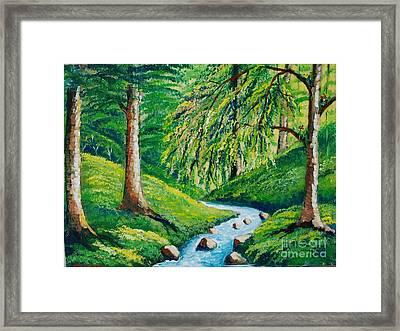 Riachuelo En El Bosque Tropical Framed Print