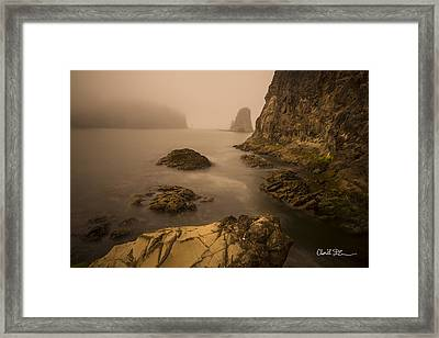 Rialto Beach Rocks Framed Print by Charlie Duncan