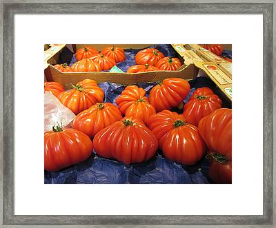 Ribbed Tomatoes Framed Print