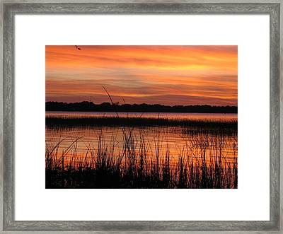 Framed Print featuring the photograph Ribbon Reflections by Joetta Beauford