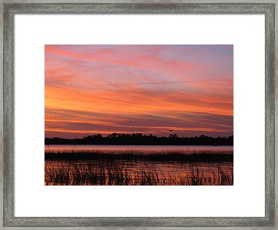 Framed Print featuring the photograph Ribbons Delight by Joetta Beauford