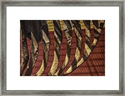 Ribcage On Red And Gold Framed Print