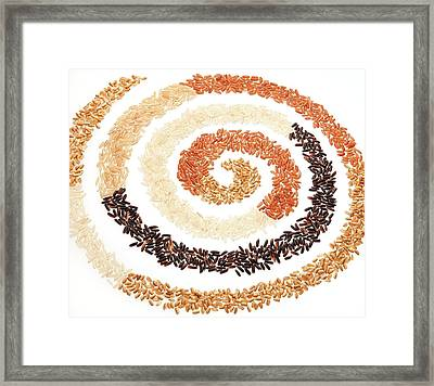 Rice Bran Types Framed Print by Peggy Greb/us Department Of Agriculture