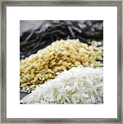 Rice Colors Framed Print by Elena Elisseeva
