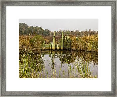 Rice Field Trunks In The Fall Framed Print