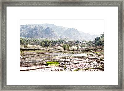Rice Fields And Village In Vietnam Framed Print