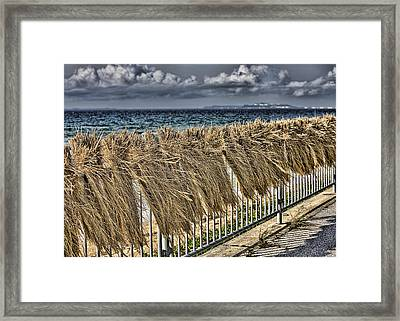 Rice Framed Print by Karen Walzer