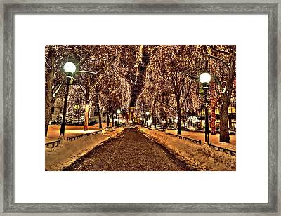 Rice Park Saint Paul Framed Print