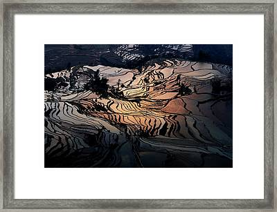 Rice Terrace Field Of Yuan Yang Framed Print by Kim Pin Tan