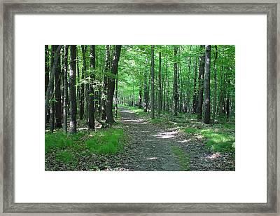 Richland County Landscape Framed Print by Jason Cupp