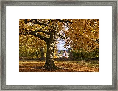 Richmond Autumn Framed Print by Maj Seda