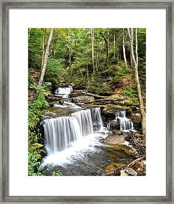 Ricketts Glen Delaware Falls Framed Print