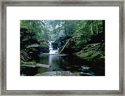 Ricketts Glen Falls 016 Framed Print