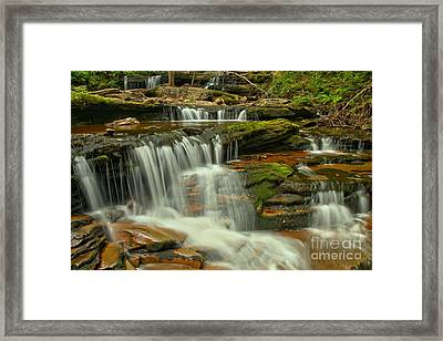 Ricketts Glen Lush Cascades Framed Print by Adam Jewell