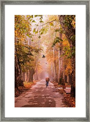 Framed Print featuring the photograph Ride A Bicycle by Okan YILMAZ