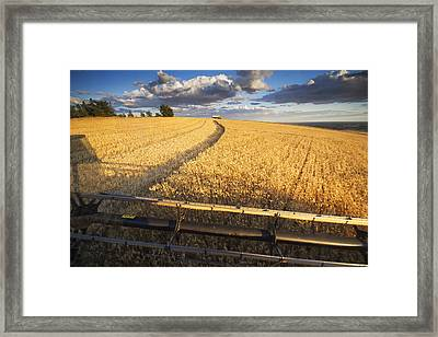 Ride Along Framed Print