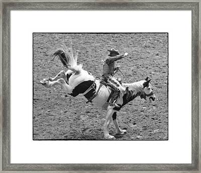 Ride Em Cowboy Framed Print by Stephen Stookey