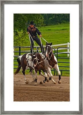Ride Them Cowboy Framed Print by Karol Livote