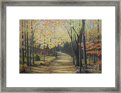 Rideau Walking Trail Framed Print