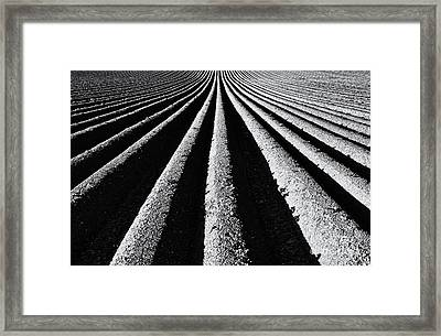 Ridge And Furrow Framed Print by Tim Gainey