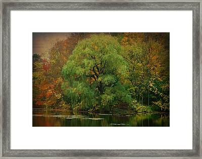 Ridge Run Park Framed Print by Terry Eve Tanner