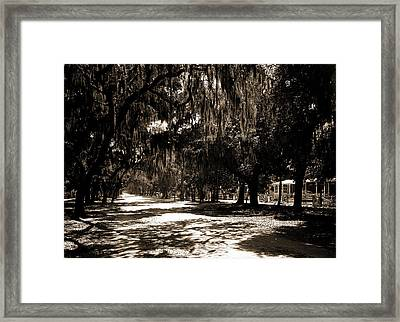 Ridgewood Ave, Daytona, Fla, Roads, Spanish Moss Framed Print by Litz Collection