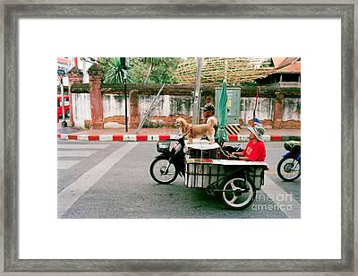 Riding Shotgun Framed Print