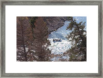 Riding The Rapids Framed Print