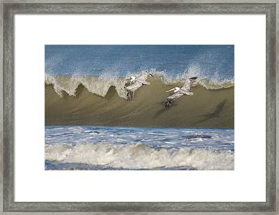 Framed Print featuring the photograph Riding The Wave by Gregg Southard