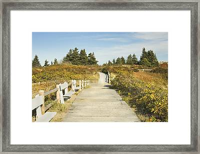 Ried State Park Beach Boardwalk On The Maine Coast Framed Print by Keith Webber Jr