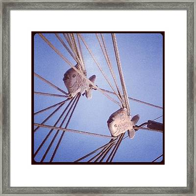 Rigging Framed Print by Maeve O Connell