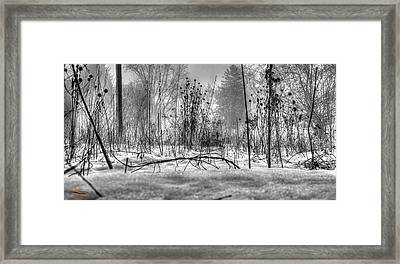 Right Before Your Eyes Framed Print by Dan Crosby