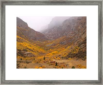 Fall Colors And Fog Framed Print by Jenessa Rahn