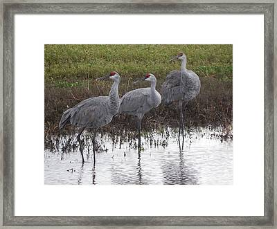 Right On Framed Print