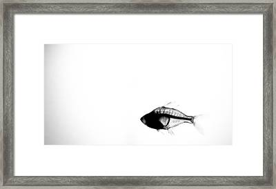 Right Thru Me Framed Print by Andrew Raby