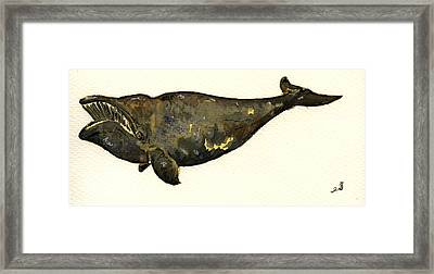 Right Whale Framed Print