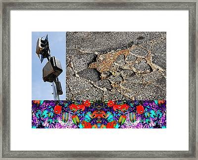 Righteous Path Mimic 2013 Framed Print by James Warren