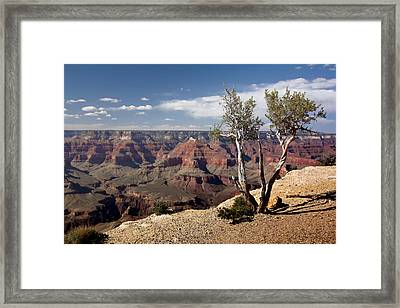 Rim Of The Grand Canyon Framed Print