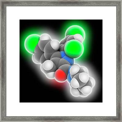 Rimonabant Drug Molecule Framed Print by Laguna Design