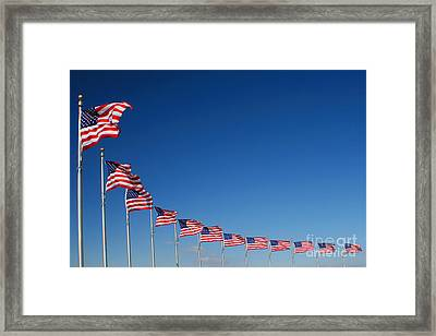 Ring Of Flags Framed Print
