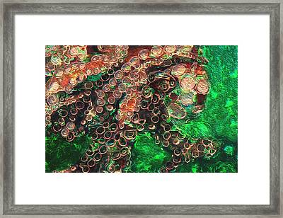 Rings Framed Print