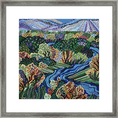 Rio Grande Framed Print by Erika Pochybova