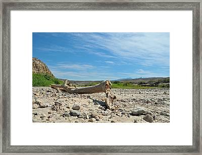 Rio Grande Framed Print by Paul Van Baardwijk