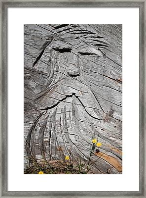 Rip Van Winkle Framed Print