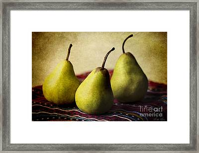 Ripe And Ready Framed Print by Linda Lees