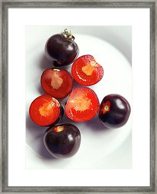 Ripe Black Tomatoes (indigo Rose) Framed Print by Ian Gowland