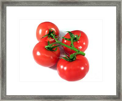 Ripe Tomatoes Framed Print by Sinisa Botas
