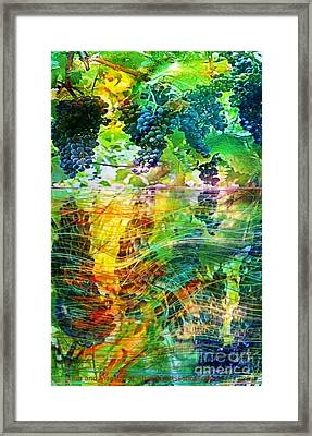 Ripened Vines Framed Print by PainterArtist FIN
